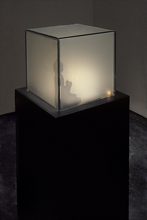 Shadow for Heisenberg (1993-1994) by Jim Campbell